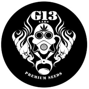 G13 Labs Logo