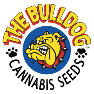 The Bulldog Seeds Logo