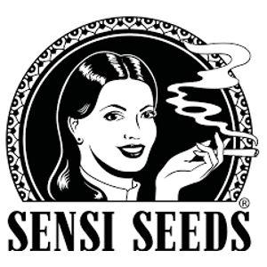 sensi-seeds