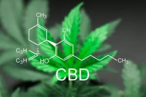 Studies that highlight the effects of CBD
