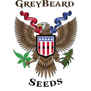 greybeard-seeds