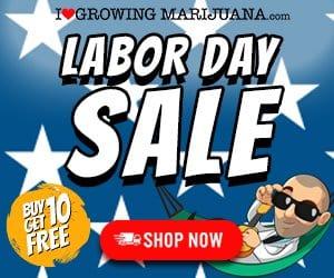 Labor Day Banner from ILoveGrowingMarijuana
